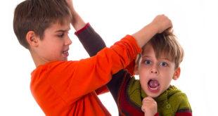 Peleas entre los hermanos, ¿por qué se pelean?